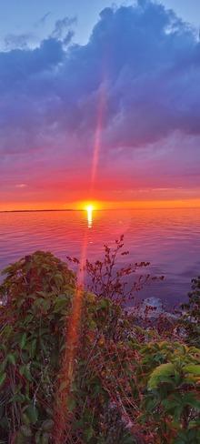 beautiful Etobicoke, ON