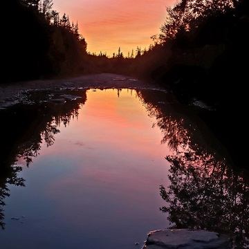 sunset reflecting in a puddle