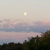 Last evening's sky