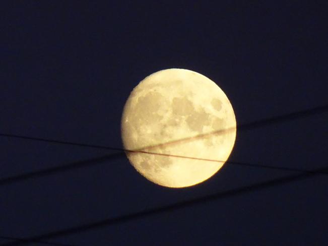 Almost Harvest Full Moon Sudbury, ON