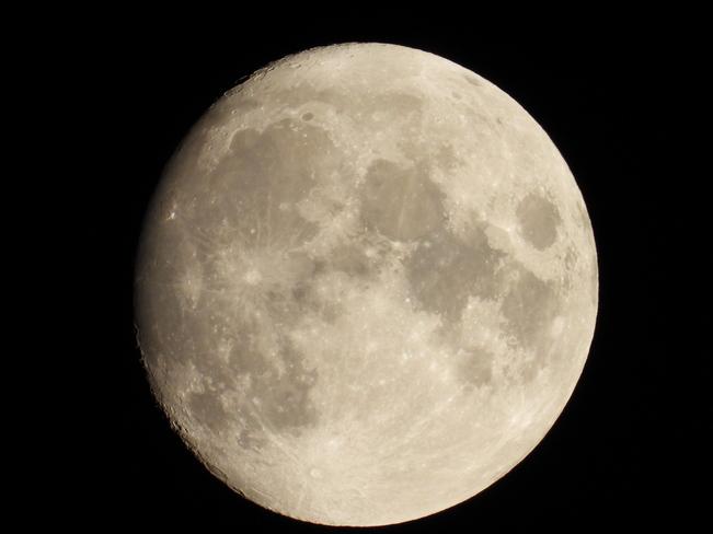 Moonshot Cambridge, ON
