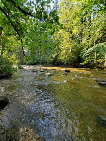 Kanaka Park Kanaka Creek Regional Park, BC