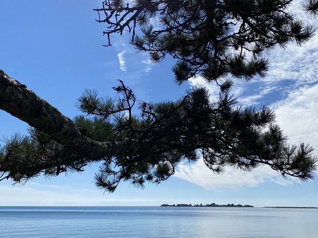 GLORIOUS DAY Presqu'Ile Point, Ontario, CA