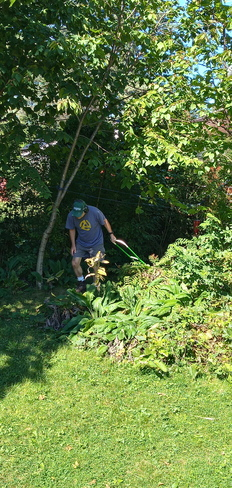 Sunday afternoon Summer lawn care Pointe-Claire, QC