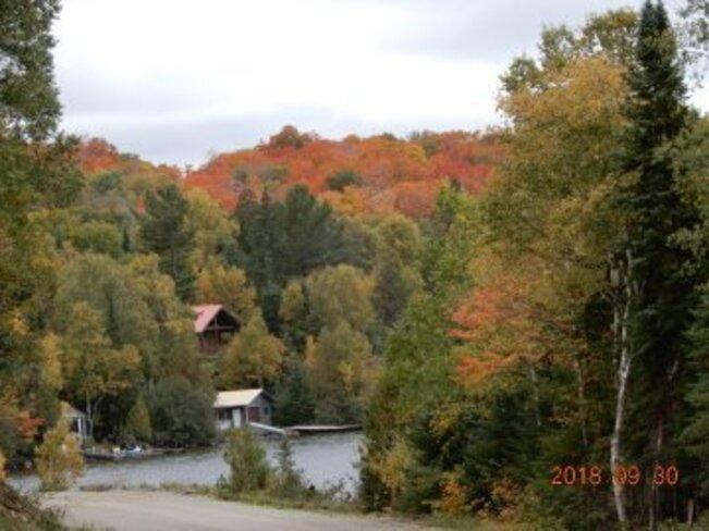 Fall colors Ranger Lake, ON
