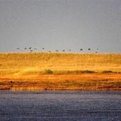 coucher de soleil sur le dune