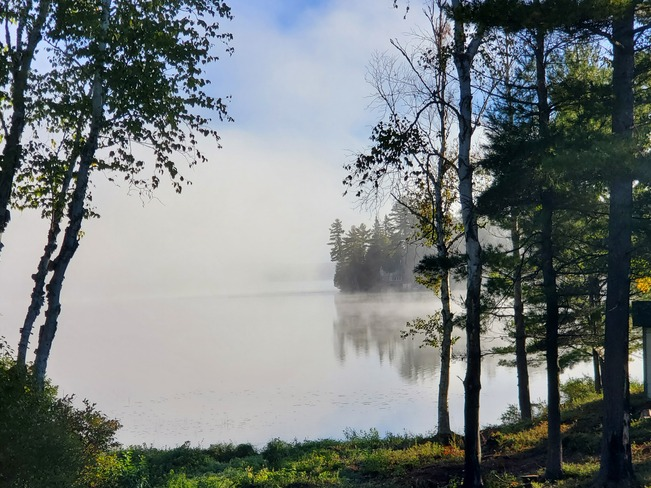 Misty morning South River, ON