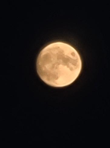 Moon rise in PEI Pownal, PE