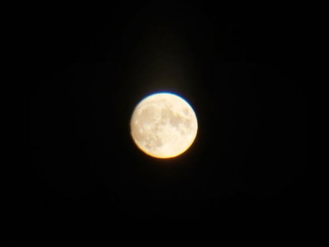 Corn moon Concord, ON