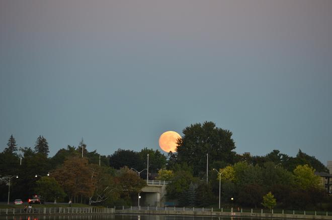 moon Ottawa, ON