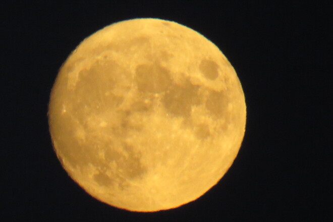 Harvest Moon Bridgewater, NS
