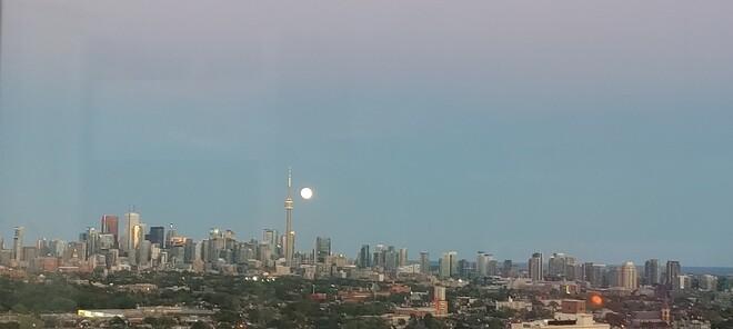 Rising Moon 2 Toronto, ON