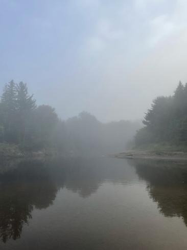 Misty morning Huntsville, Ontario, CA