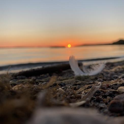 Sunset beauty Callander, Ontario, CA