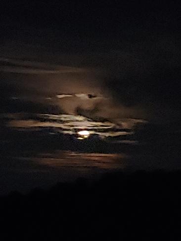 Harvest Moon Thamesford, ON