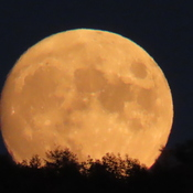 Lever de Lune.
