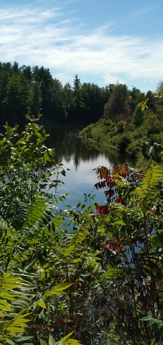 Rivière du Nord entre les branches Saint-Jérôme, QC