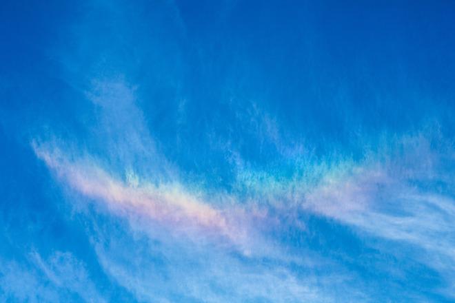 Iridescence Falcon Rainbow Burlington, ON