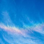Iridescence Falcon Rainbow