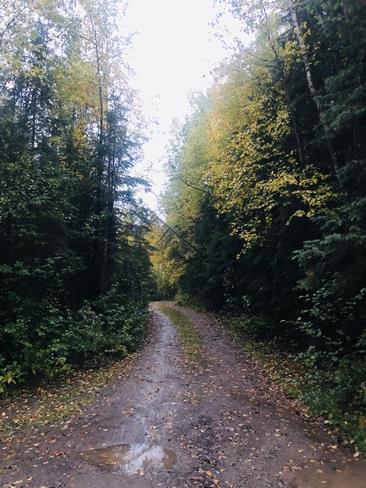 Beautiful Rainy Fall Day Bear Lake, British Columbia, CA