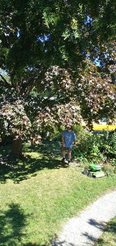 Good lawn care Pointe-Claire, QC
