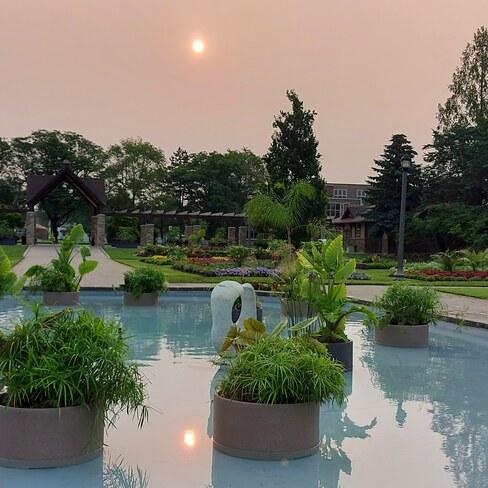 Smokey skies Jackson Park, ON