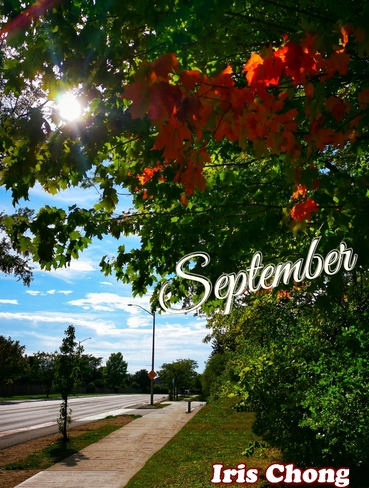 Sept 20 2021 23C Happy Monday:) Fall is approaching in Thornhill Thornhill, ON