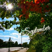 Sept 20 2021 23C Happy Monday:) Fall is approaching in Thornhill
