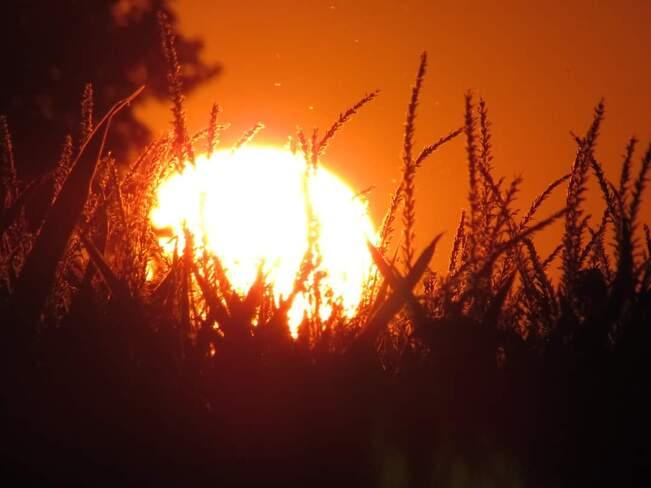 Coucher de Soleil en feu Saint-Anicet, QC