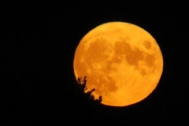 Harvest Moon over the La Have River. Bridgewater, NS