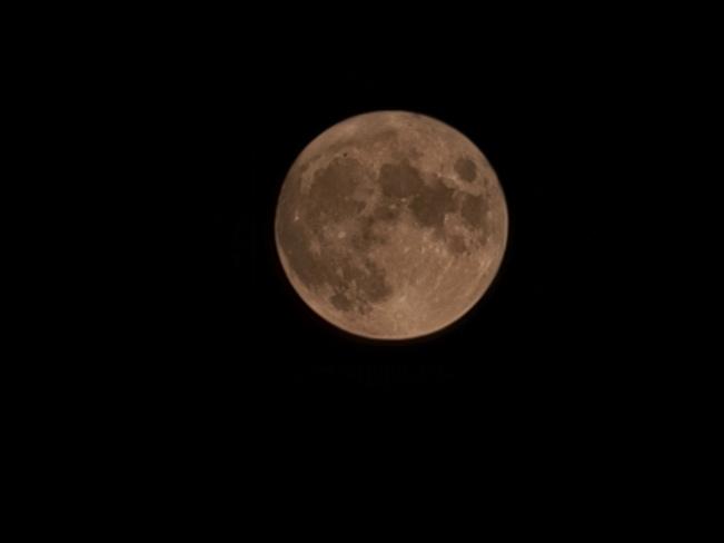 Full Moon up in the Sky Sydney, NS
