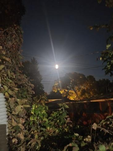 harvest moon Regina, SK