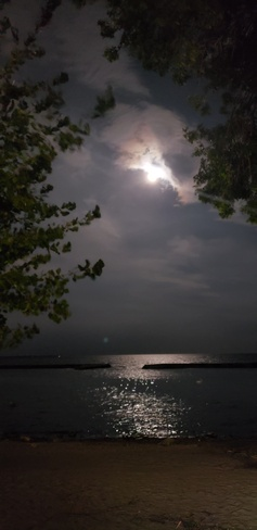 Moonlight on the lake Etobicoke, ON