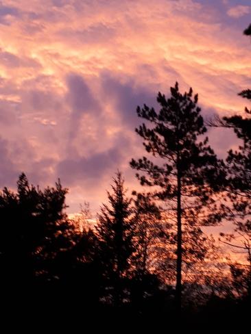 Good morning Burleigh Falls, ON
