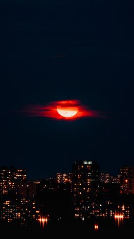 Moon gazing Bayview Village, ON