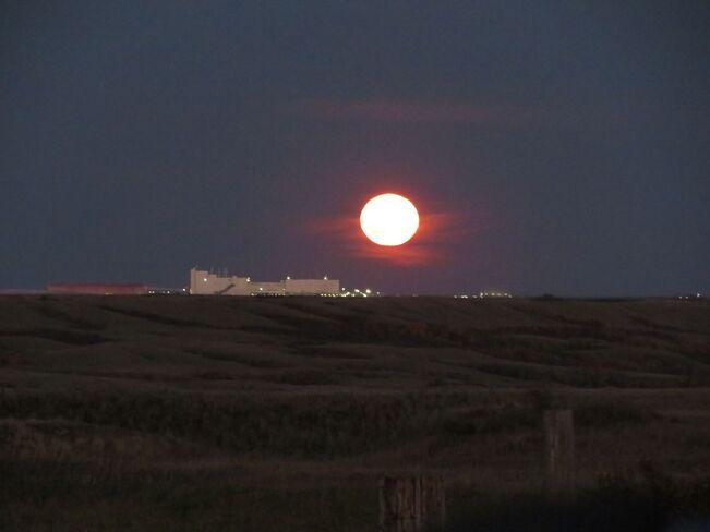 Full Moon Rising Buffalo Pound Lake, Saskatchewan