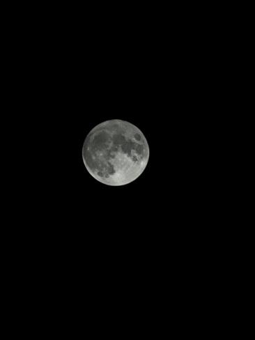 Harvest Moon Mallorytown, ON
