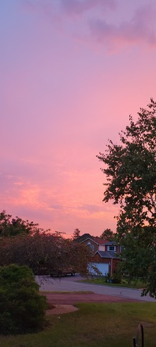Pink Evening Courtice, ON