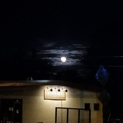beautiful moon above WeatherHead Brew Co