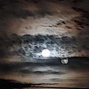 Harvest Moon, day 2