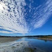 2021-09-21 - Beautiful warm afternoon at Esquimalt Lagoon