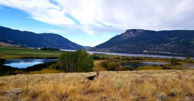 Nicola Lake Quilchena, BC