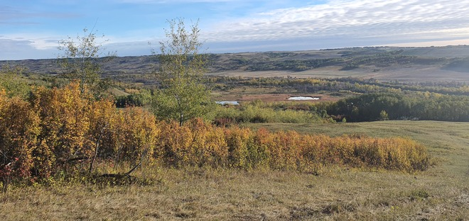 The Pugh River Valley Rosedale, AB