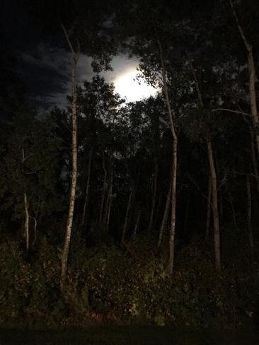 Beautiful Moonlight Almdals Cove, Manitoba, CA