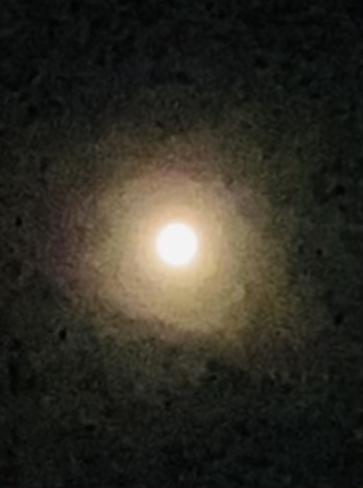 Moon Glo Gander, Newfoundland and Labrador, CA
