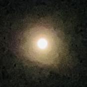 Moon Glo