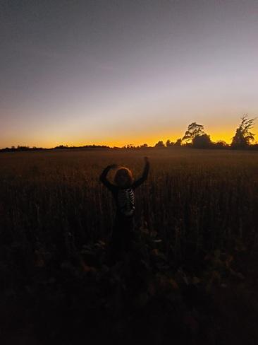 sunset Norwood, ON