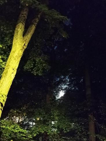 beau soir d'automne Joliette, QC