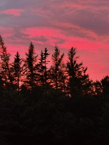 Sunset Rogersville, NB