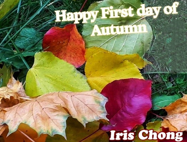 Sept 22 2021 16C Welcome First day of Autumn - Richmond Hill Richmond Hill, ON